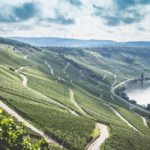Ралли Германии WRC 2017 - 10 этап