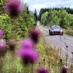 Ралли Финляндии WRC 2017 - 9 этап